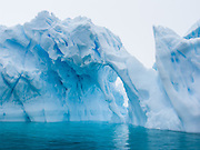 At Neko Harbor, the Southern Ocean carved arches into a blue iceberg, which was calved from a nearby glacier on Graham Land, the north portion of the Antarctic Peninsula, Antarctica.