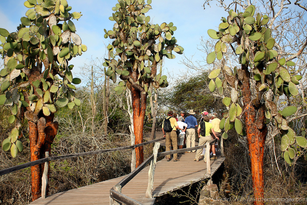 South America, Ecuador, Galapagos Islands. A group of tourists visit Charles Darwin Research Foundation on Santa Cruz Island.