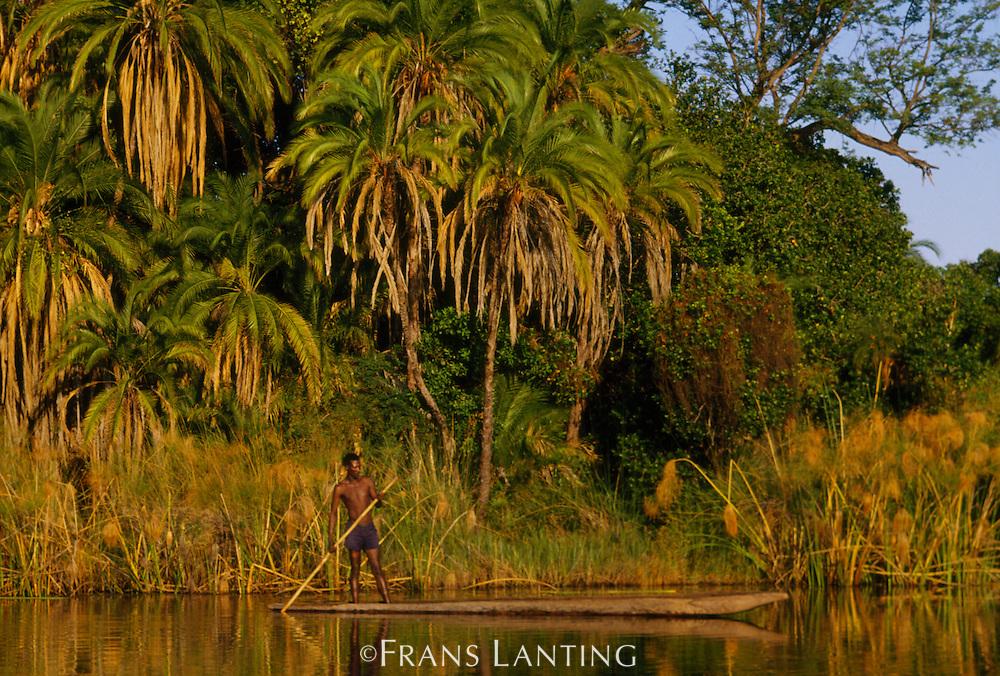 Buhsman in dugout canoe, Okavango Delta, Botswana