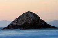 Seabirds resting on Seal Rock at sunset - San Francisco, California