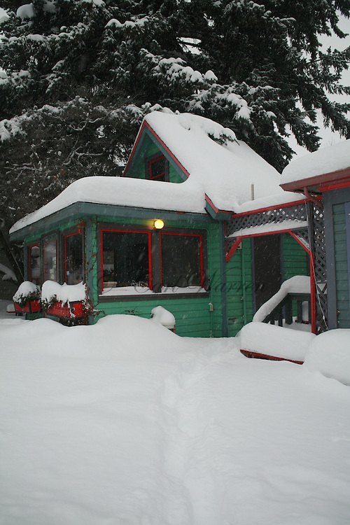 winter images 2008