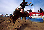 Rodeo - The Original American Extreme Sport