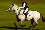Eventing (equestrian triathlon), Cross Country event, The Event at Rebecca Farms, Kalispell, Montana, Caitlin Davidson, Appaloosa