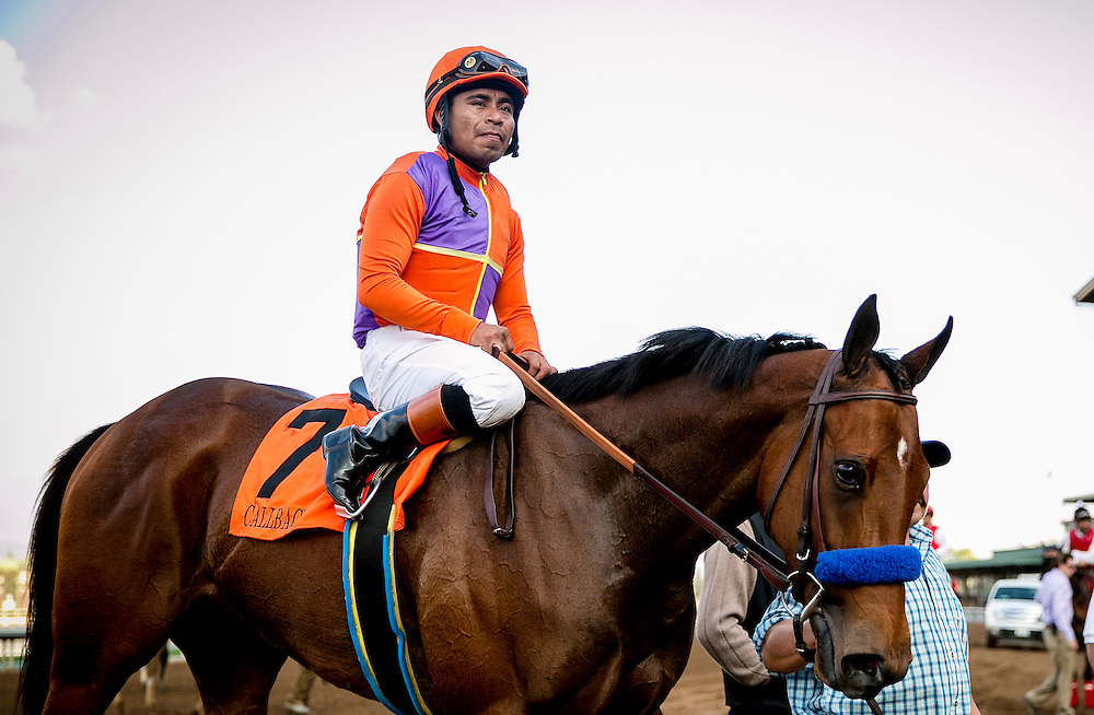 January 31 2015: Callback with jockey Martin Garcia up wins the Las Virgenes Stakes GI at Santa Anita Park in Arcadia CA. Alex Evers/ESW/CSM