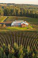 Aerial view over J.K, Carrier, Chehalem Mountains AVA, Willamette Valley, Oregon