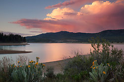 """Sunset at Boca Reservoir 4"" - This colorful cloud and mule ear flowers were photographed during sunset at Boca Reservoir near Truckee, California."