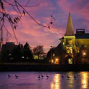 Geese walk across Lake Arthur at Sunset. (Photo by Gonzaga University)