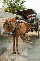 Naung Shwe Horse Cart
