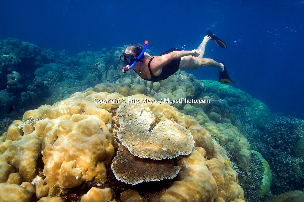 Surin Islands Marine National Park, Thailand, April 2007. Jillian snorkels over a reef close to the yacht.   The forested green Surin Islands boast some of Thailands best preserved coral reefs. The fact that they are in shallow water makes it a snorkelers paradise. Thousands of brightly colored fish can be seen going about their daily life. Photo by Frits Meyst/Adventure4ever.com