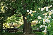 Le jardin du Tomple