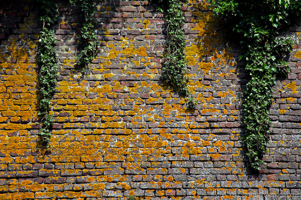 Europe, France, Lille. Wall of the Citadel in Lille.