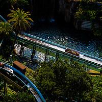 TAMPA, FLORIDA -- August 2013 -- Busch Gardens.   (PHOTO / CHIP LITHERLAND)