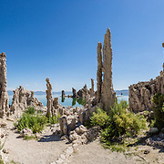 Intriguing towers of calcium-carbonate decorate the South Tufa Area, in Mono Lake Tufa State Natural Reserve, Lee Vining, California, USA. The Reserve protects wetlands that support millions of birds, and preserves Mono Lake's distinctive tufa towers -- calcium-carbonate spires and knobs formed by interaction of freshwater springs and alkaline lake water. Mono Lake has no outlet and is one of the oldest lakes in North America. Over the past million years, salts and minerals have washed into the lake from Eastern Sierra streams and evaporation has made the water 2.5 times saltier than the ocean. This desert lake has an unusually productive ecosystem based on brine shrimp, and provides critical nesting habitat for two million annual migratory birds that feed on the shrimp and blackflies. Since 1941, diversion of lake water tributary streams by the city of Los Angeles lowered the lake level, which imperiled the migratory birds. In response, the Mono Lake Committee won a legal battle that forced Los Angeles to partially restore the lake level. This panorama was stitched from 11 overlapping photos.