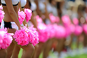 PHILADELPHIA - OCTOBER 5: A general view of the Philadelphia Eagles cheerleaders pom poms during a game against the Washington Redskins on October 5, 2008 at Lincoln Financial Field in Philadelphia, Pennsylvania. The Redskins won 23-17. *** Local Caption ***