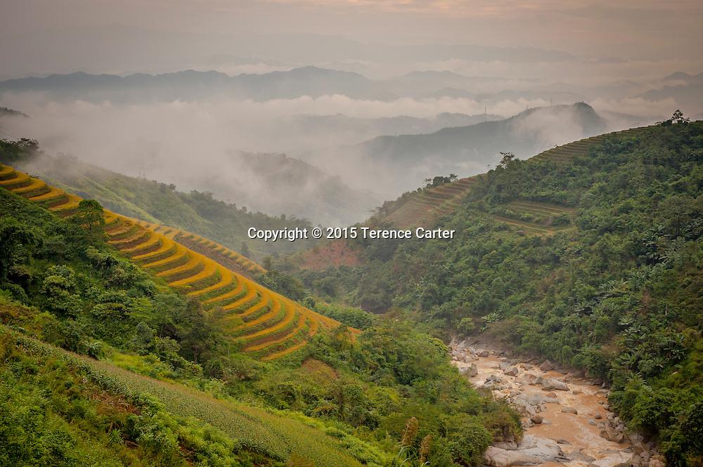 Terraced farms outside Sapa, Vietnam.