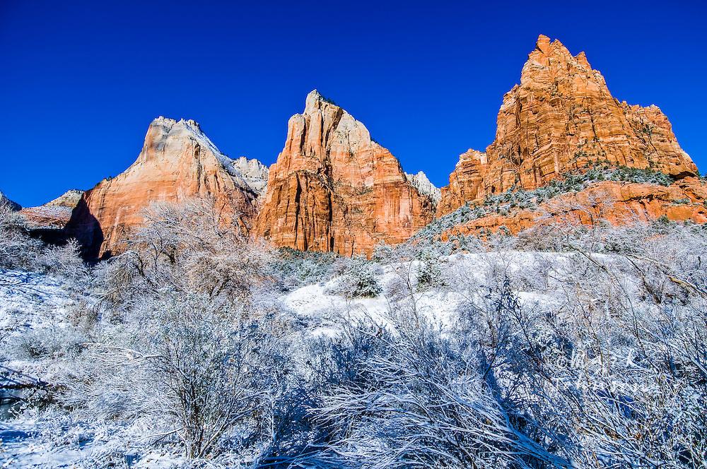 Zion National Park, Utah, USA --- Cliffs in Zion National Park