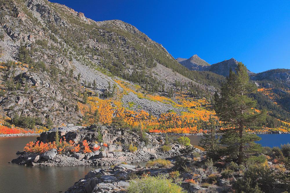 Lake Sabrina Island - Fall Color