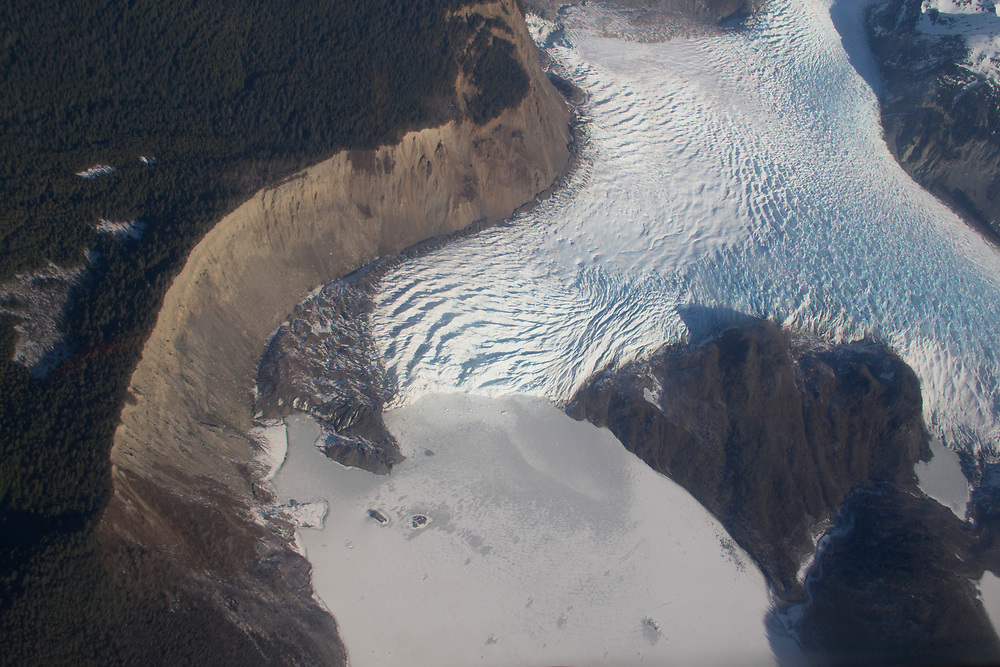"Finger Glacier on the outer coast of Glacier Bay shows a good example of a ""trim line""."