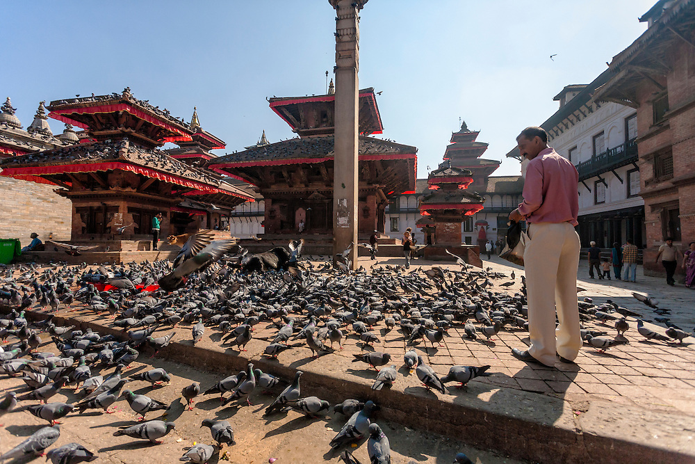 A Nepali man feeds pigeons in front of ancient temples in Kathmandu's World Heritage listed Durbar Square.