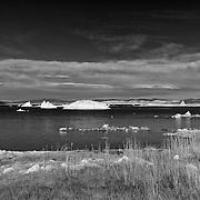 Mono Lake West Shoreline Tufa Wide - Infrared Black & White