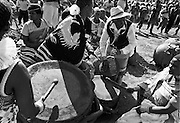 IPLM0014 , South Africa, Venda, June 2001. Women beating on traditional Venda drums during a dance performance.