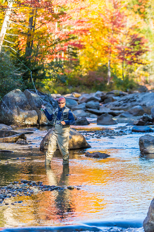 A man fly fishing on Orbeton Stream in fall. Madrid Township, Maine.