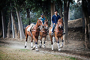 "LAHORE: Polo is arguably one of the oldest recorded team sports in history. The first matches being played in Persia over 2500 years ago. Initially thought to have been created by competing tribes of Central Asia, it was quickly taken up as a training method for the King's elite cavalry. These matches could resemble a battle with up to 100 men to a side. ..As mounted armies swept back and forth across this part of the world, conquering and re-conquering, polo was adopted as the most noble of pastimes by the Kings and Emperors, Shahs and Sultans, Khans and Caliphs of the ancient Persians, Arabs, Mughals, Mongols and Chinese. It was for this reason it became known across the lands as ""the game of kings"". ..British officers themselves re-invented the game in 1862 after seeing a horsemanship exhibition in Manipur, India. ..In Pakistan's current state of political instability and in a city suffering incredible acts of terrorism and sectarianism, the Lahore Polo scene thrives. The preserve of the privileged, well connected and upper class, matches and leagues run throughout the week, with weekends being a highly social occasion with larger crowds ad socialites in attendance. An opportunity for the rich to show off both their latest SUV's and Arab or South American ponies...Many teams sponsor professional polo players from Argentina and the Arabian Peninsula for a season to live and play polo in Pakistan, ..The feeling of many of its players are epitomised by a famous verse inscribed on a stone tablet next to the polo ground in Gilgit: ""Let others play at other things. The king of games is still the game of kings.""."