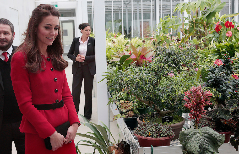 Britain's Catherine, Duchess of Cambridge officially open the Christchurch Botanic Gardens Visitor Centre Christchurch, New Zealand, Monday, April 14, 2014. Credit:SNPA / Reuters, Anthony Phelps  POOL