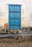 Chickens and wall in Sumidero, Pinar del Rio, Cuba.