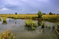 Natuurmonumenten in Drenthe