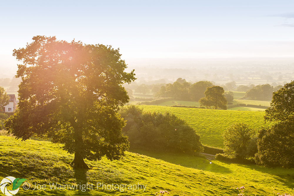 The Cheshire Plain stretches out below the Pheasant Inn, Burwardsley - taken in July.
