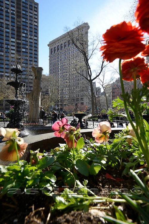 Spring in Madison Square Park.