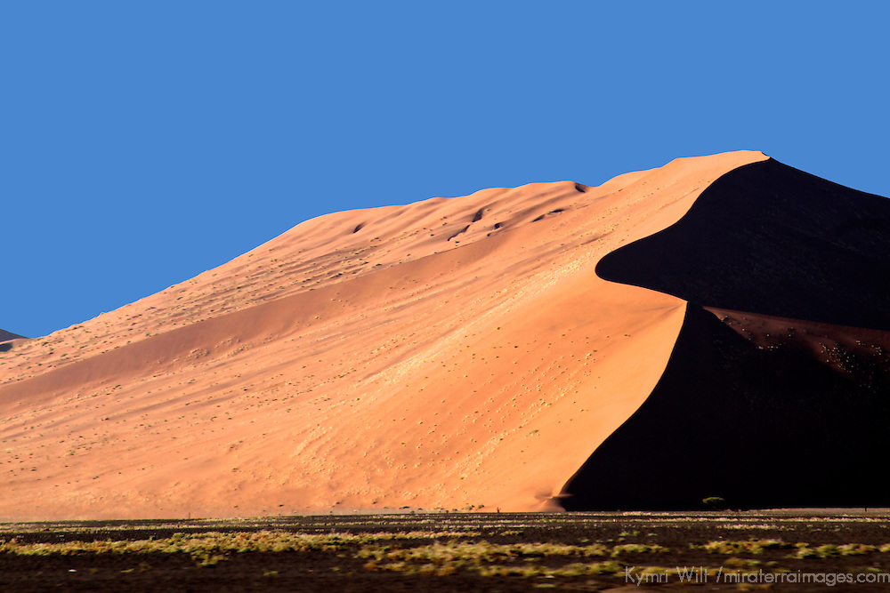 Africa, Namibia, Sossusvlei. Dune 45, the most photographed dune in the world.