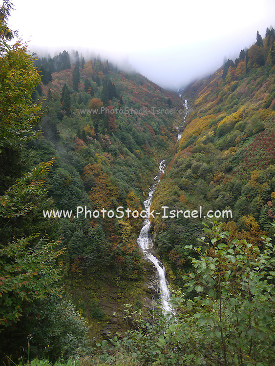 Turkey, Trabzon Province, a water stream