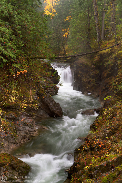 Fall colours and the Lower Little Qualicum Falls in Little Qualicum Falls Provincial Park on Vancouver Island, British Columbia, Canada
