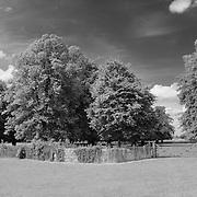 Fence & Trees - Avebury, UK - Infrared Black & White