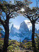 """Mount Fitz Roy (3405 meters or 11,170 feet) rises abruptly above a forest of Southern Beech (Lenga or Nothofagus) in the southern Andes mountains, near El Chaltén village, in Los Glaciares National Park, Argentina, South America. In 1877, explorer Perito Moreno named """"Cerro Fitz Roy"""" for Robert FitzRoy (no space before the capital R) who, as captain of the HMS Beagle, had travelled up the Santa Cruz River in 1834 and charted much of the Patagonian coast. First climbed in 1952 by French alpinists Lionel Terray and Guido Magnone, Mount Fitz Roy has very fickle weather and is one of the world's most challenging technical ascents. It is also called Cerro Chaltén, Cerro Fitz Roy, and Monte Fitz Roy (with a space before the R). Chaltén comes from a Tehuelche (Aonikenk) word meaning """"smoking mountain"""" (explained by frequent orographic clouds). Cerro is a Spanish word meaning hill. El Chaltén village was built in 1985 by Argentina to help secure the disputed border with Chile, and now tourism supports it, 220 km north of the larger town of El Calafate. The foot of South America is known as Patagonia, a name derived from coastal giants, Patagão or Patagoni, who were reported by Magellan's 1520s voyage circumnavigating the world and were actually Tehuelche native people who averaged 25 cm (or 10 inches) taller than the Spaniards. Mount Fitz Roy is the basis for the Patagonia company's clothing logo, after Yvon Chouinard's ascent and subsequent film in 1968."""