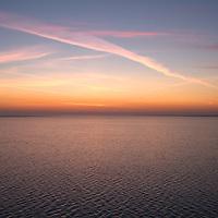 Sunrise and birds flocking. - Hamford Water