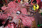 Workers making the Fireworks in a small room inside the factory. Image © Balaji Maheshwar/Falcon Photo Agency
