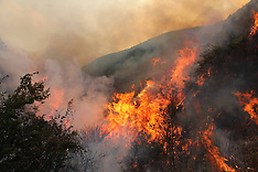 APR 26 2013 Forest Fire In Qinfeng