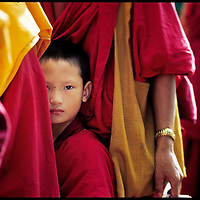 A young tibetan monk on his way to Bylakuppe, Karnata province. //// Jeune moine tibétain en route pour Bylakuppe, province du Karnataka.