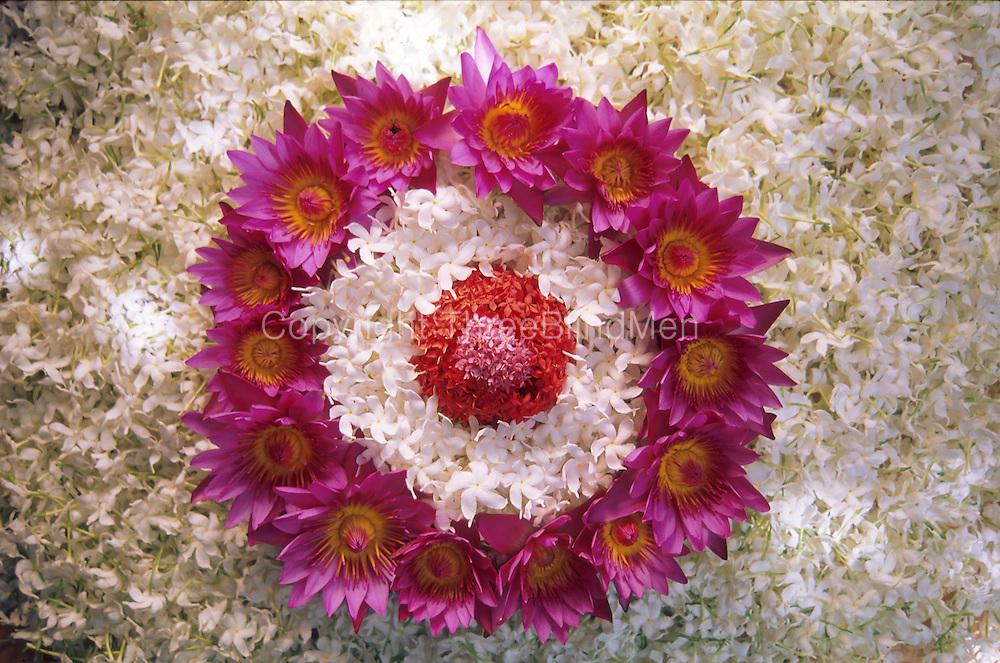 Sri Lanka. Flowers as offerings.