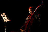 """Bass player Ken Filiano during a """"Lou Grassi's avanti Galopi""""performance. """"Jazz ao Centro"""" jazz festival is held twice a year in portuguese town of Coimbra."""