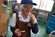 Hiroko Yoshimura (76 years old, in 9th year of working for Kato company) is an elderly worker at Kato (a light industry company) in Nakatsugawa, Japan, Monday 21st June 2010. Kato company has a workforce of 100 people, 50% of whom are 60 years of age or older. The elderly work force earn JPN ¥800-1,000 per hour, but receive no annual bonus or pay rise.