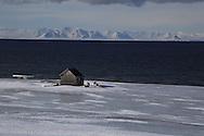 Backcountry skiiers stop at coastal hut in April between Longyearbyen and Barentsburg; Svalbard, Norway.