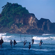 Sri Lanka. Stilt Fishermen off the south coast of the island.