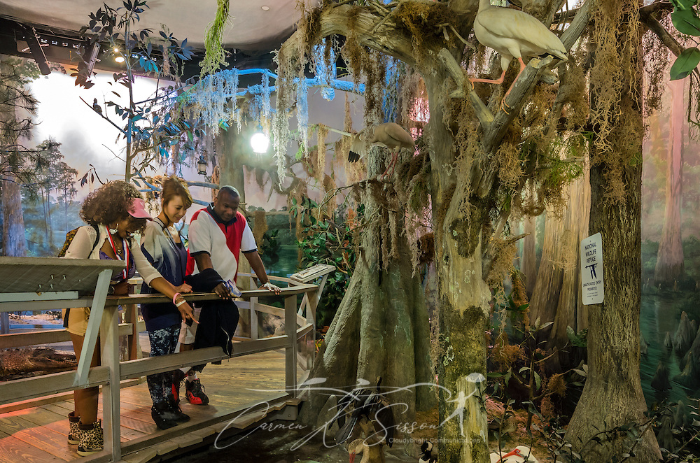 """A family explores a model of the Okefenokee Swamp in the """"A Walk Through Time in Georgia"""" exhibit at Fernbank Museum of Natural History, May 23, 2014, in Atlanta, Georgia. From left are Toni Ingram, Hiromi Ingram, and Tyrone Ingram. The museum opened in 1992 and is known for its massive dinosaur exhibitions. The museum also has an IMAX theater and holds popular public events like monthly salsa dance nights and the weekly """"Martinis & IMAX"""" program. (Photo by Carmen K. Sisson/Cloudybright)"""