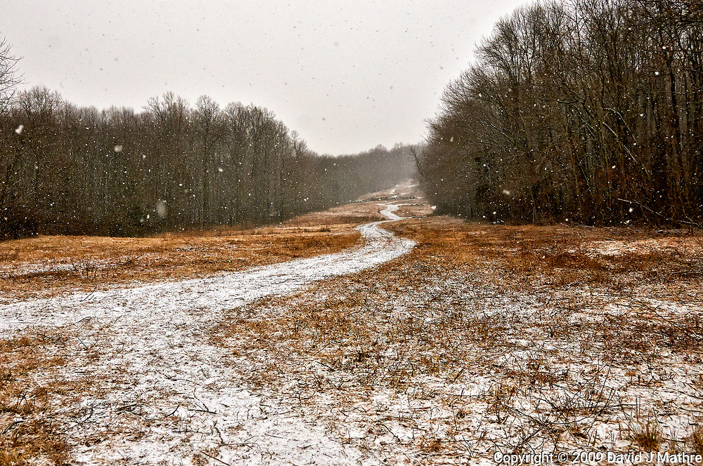 Gas-line trail on a snowy day. Sourland Mountain Preserve in New Jersey. Image taken with a Nikon D300 camera and 18-200 mm VR lens (ISO 400, 26 mm, f/5.6, 1/800 sec).