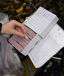 Rachel Wheat, a graduate student at the University of California Santa Cruz, places a vial containing a sample of bear saliva on the banks of the man-made spawning channel of Herman Creek, near Haines, Alaska.<br /> <br /> Wheat is collecting DNA samples of bears from bear saliva left on salmon carcasses as part of research for her doctoral dissertation. She hopes to determine if partially-consumed salmon carcasses can serve as a viable source for bear DNA to genotype individuals. She also looking to determine a minimum population estimate for the number of bears using the Chilkoot Valley and the ratio of males to females, particularly in light of increase human presence. <br /> <br /> The bear DNA collection is part of her dissertation which looks at how the availability of salmon affects eagle movement, bear activity, and subsistence fishermen. EDITORS NOTE: Images of Wheat capturing bald eagles for the bald eagle portion of her study are available here: http://denglerimages.photoshelter.com/gallery/Bald-eagle-research-Chilkat-River-eagle-migration-study/G0000GTyPvah7eiQ/<br /> <br /> During late fall, bald eagles congregate along the Chilkat River to feed on salmon. This gathering of bald eagles in the Alaska Chilkat Bald Eagle Preserve is believed to be one of the largest gatherings of bald eagles in the world.<br /> <br /> <br /> A partially consumed chum salmon lies on the banks of the spawning channel of Herman Creek, near Haines, Alaska.<br /> <br /> Rachel Wheat, a graduate student at the University of California Santa Cruz, is collecting DNA samples of bears from bear saliva left on salmon carcasses as part of research for her doctoral dissertation. She hopes to determine if partially-consumed salmon carcasses can serve as a viable source for bear DNA to genotype individuals. She also looking to determine a minimum population estimate for the number of bears using the Chilkoot Valley and the ratio of males to females, particularly in light of increase human presence. <br /> <br /> The bear DNA collection is part of her dissertation