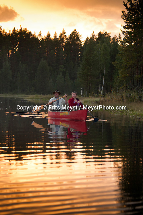 Angra, Hälsingland, Central Sweden, August 2013. The best way to observe the beavers is by canoe in the early morning or evening when the nocturnal animals come out. Camp Angra is a wilderness camping near Karbola owned by the Dutch Hassoldt family. Marco specialises as a wilderness guide and the camping offers Fishing and Flyfishing, Wildlifewatching, birding, outdoor fun, hiking, biking and canoeing, while Sonja runs the camping. The extensive forests dotted with hundreds of lakes of a spectacular landscape for wilderness camping. hike through the forests picking berries and collecting mushrooms, see moose and track bears and wolves. Navigate the lakes in a canoe and catch trout and salmon with a fly rod and see beavers.  Gavleborg and Dalarna regions are bursting with adventure. Photo by Frits Meyst/Adventure4ever.com